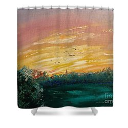 In The Evening Shower Curtain