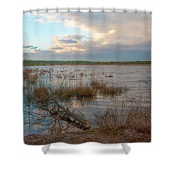 Shower Curtain featuring the photograph Incoming In The New Jersey Pine Barrens by Kristia Adams