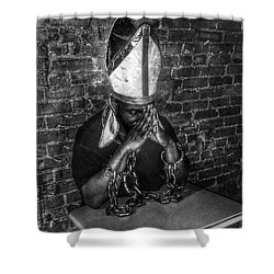 Inquisition Iv Shower Curtain