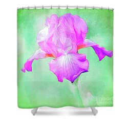 Iris Ready To Fly Shower Curtain