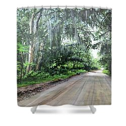 Island Road Shower Curtain