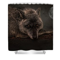 Its A Lonely Night  Shower Curtain