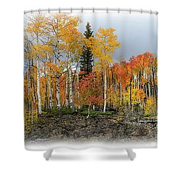 It's All About The Trees Shower Curtain