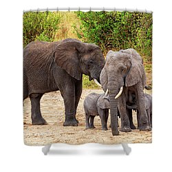 Shower Curtain featuring the photograph It's Twins by Kay Brewer