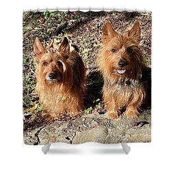 Jack And Lily 2 Shower Curtain