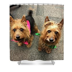 Jack And Lily Shower Curtain