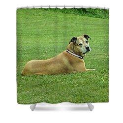 Jessie Shower Curtain