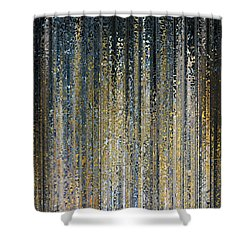 Shower Curtain featuring the painting Jesus Christ The Lord Of Glory. 1 Corinthians 2 8 by Mark Lawrence
