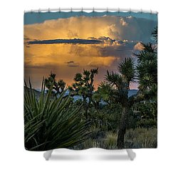 Joshua Tree Thunder Shower Curtain