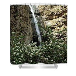 Jump Creek Falls Canyon Shower Curtain