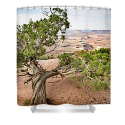 Juniper Over The Canyon Shower Curtain