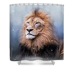 King Winter Shower Curtain