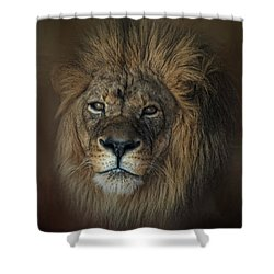 King's Gaze Shower Curtain