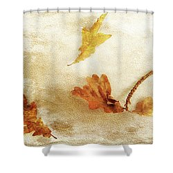 Shower Curtain featuring the photograph Last Days Of Fall by Randi Grace Nilsberg