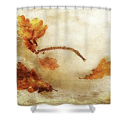 Shower Curtain featuring the photograph Late Late Fall by Randi Grace Nilsberg