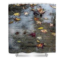 Leaves In The Rain Shower Curtain