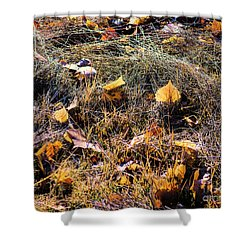 Shower Curtain featuring the photograph Leaves Of Grass by Jon Burch Photography