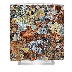 Lichen On Rock Shower Curtain
