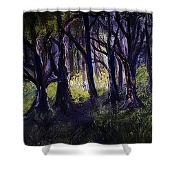 Light In The Forrest Shower Curtain