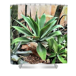 Lion's Tail Agave Shower Curtain