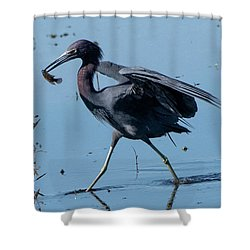 Little Blue Heron With Fish Shower Curtain