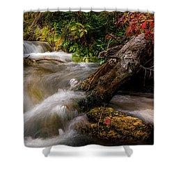 Shower Curtain featuring the photograph Little Deer Creek Autumn by TL Mair