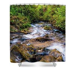 Shower Curtain featuring the photograph Little Deer Creek by TL Mair