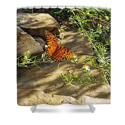 Shower Curtain featuring the photograph Little River Canyon Butterfly  by Rachel Hannah