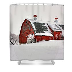 Lone Barn Shower Curtain