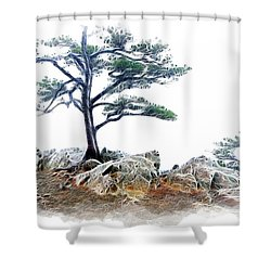 Lonely Planet Fx Shower Curtain