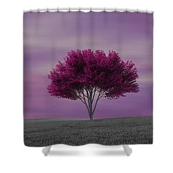 Lonely Tree At Purple Sunset Shower Curtain