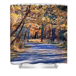 Shower Curtain featuring the photograph Long And Winding Road At Gordon's Pond by Bill Swartwout Fine Art Photography