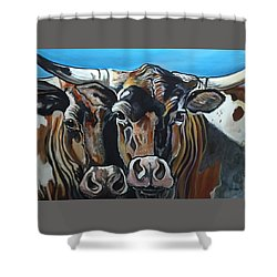 Longhorns, Interrupted Shower Curtain