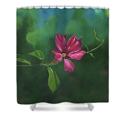 Looking For Something To Hold On To Shower Curtain