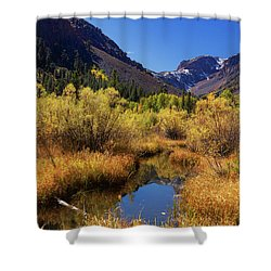 Lundy's Magic Shower Curtain
