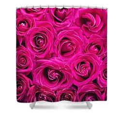 Magenta Roses Shower Curtain