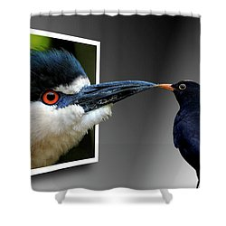 Shower Curtain featuring the photograph Magic Mirror On The Wall by Bill Swartwout Fine Art Photography
