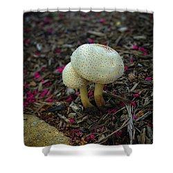 Magical Mushrooms Shower Curtain