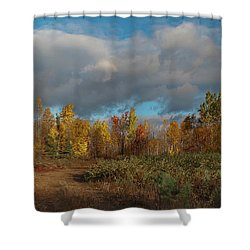 Maine Wilderness Color 2 Shower Curtain