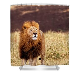 Majesty Shower Curtain