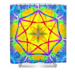 Mandala 12 9 2018 Shower Curtain