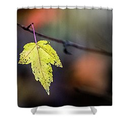 Shower Curtain featuring the photograph Maple Flag by Michael Arend