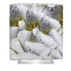 Mariposa Morning Dewdrop Collage Shower Curtain