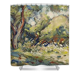 Marmari Olive Orchard Paxos Shower Curtain