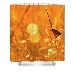 Marsh Sparrow Shower Curtain