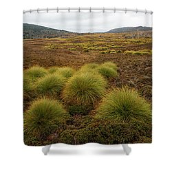 Shower Curtain featuring the photograph Maryland Track In Cradle Mountain. by Rob D