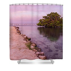 Mayan Sea Reflection 2 Shower Curtain