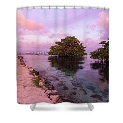 Mayan Sea Reflection Shower Curtain