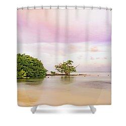 Mayan Sea Shower Curtain