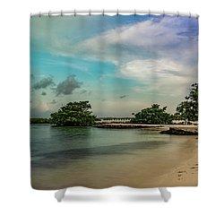 Mayan Shore 2 Shower Curtain